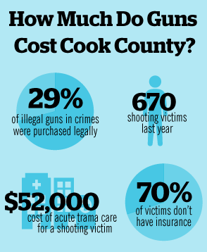 Cook County 2013 budget includes proposed tax on bullets, guns