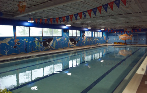 Swim school for infants, children opens in West Village neighborhood