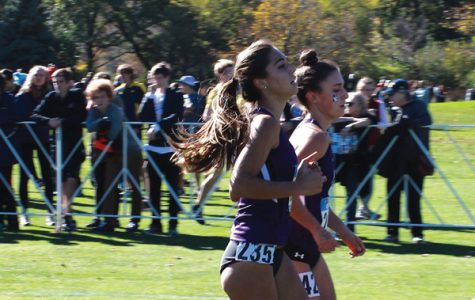 Cross Country: Northwestern travels to Iowa for Regional Preview meet