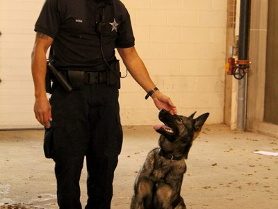 Q&A: Anthony Sosa, Evanston Police Department's new canine officer