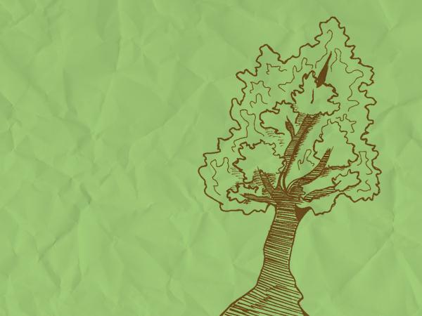 In Focus: Northwestern sustainability movement pushes for communication, education