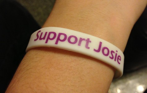 Campus groups to sell wristbands for Nordman
