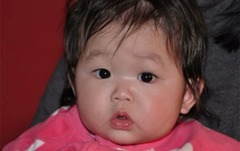 Sehwa Kim, a South Korean 9-month-old girl, will return to her home country Wednesday. Evanston residents Jinshil and Christopher Duquet adopted Sehwa in June without the assistance of an adopting agency, which is required under South Korean law.