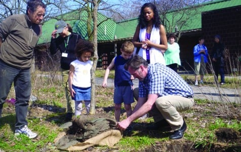 City arborist Mark Younger plants a Burr Oak tree as children Mahalia Bonner (left) and Ryan Rody (right) look on. The City of Evanston hosted an Earth Day/Arbor Day celebration on Friday.