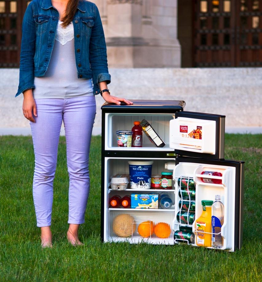 The+3.1-cubic-foot+refrigerator+is+an+item+offered+by+RezEssentials%2C+a+new+service+from+Northwestern+Student+Holdings.+The+founders+of+the+business+say+they+have+sold+dozens+of+the+refrigerators.+