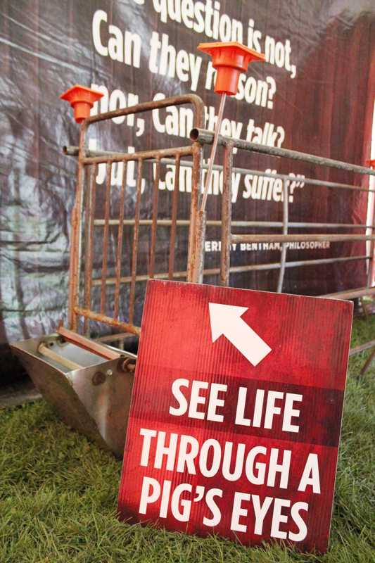 Members+of+the+youth+division+of+PETA%2C+peta2%2C+set+up+an+imitation+factory+farm+on+Norris+East+Lawn+on+Wednesday.+Volunteers+said+they+hoped+the+exhibit+would+influence+students+to+go+vegan.%0A