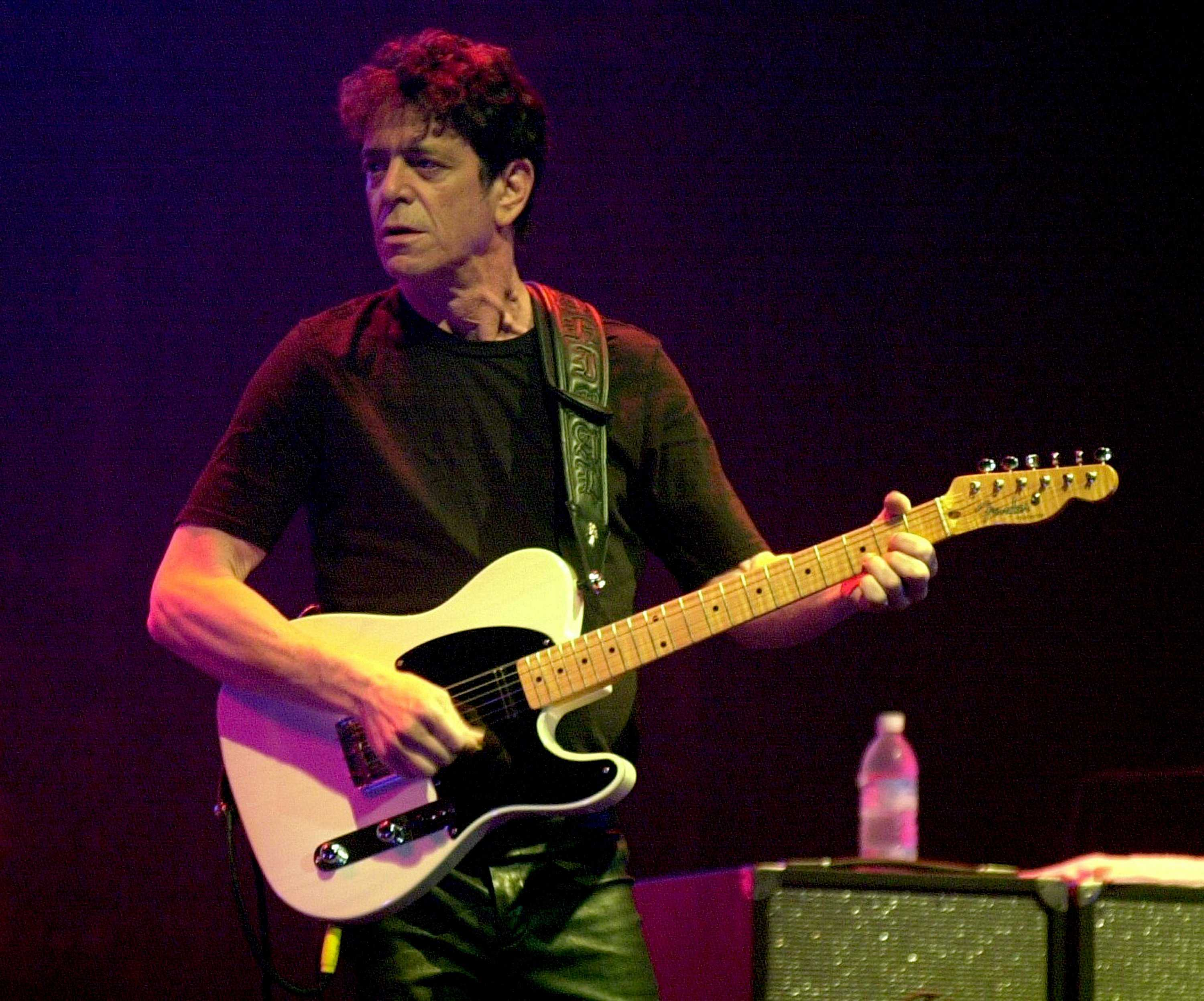 """Lou Reed is well-known for his 1973 hit """"Walk on the Wild Side.""""  He was an icon in the world of classic rock music."""