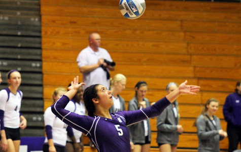 Volleyball: Wildcats try to claw their way back