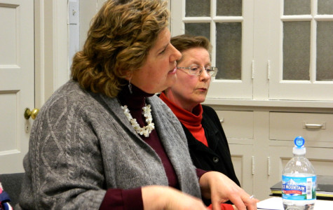 CARE board member Gail Lovinger Goldblatt speaks at Tuesday's Human Services Sub-Committee meeting. The group voted to terminate the city's relationship with the animal adoption nonprofit.