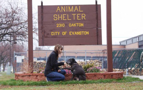 The Community Animal Rescue Effort operates out of Evanston's animal shelter, 2310 Oakton St. The Human Services Committee will discuss on Monday the future of the nonprofit, which has drawn criticism for its euthanasia policies.
