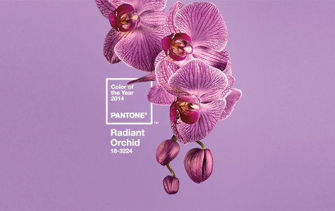 Pantone's 2014 Color of the Year: Don't get Crayola crazy
