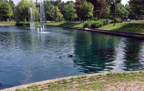 Renovations begin on Dawes Park pond