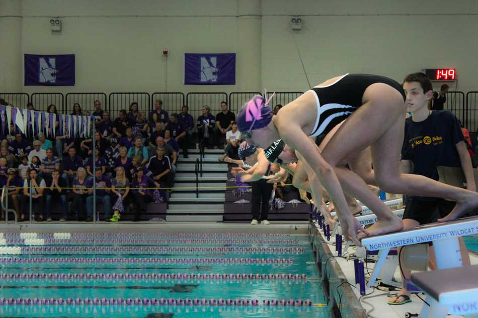 Swimmers from Northwestern, Oakland and Illinois-Chicago dive into the pool at the start of a race. Both NU's men's and women's swimming teams beat both opponents in a tri-meet in Evanston this weekend.