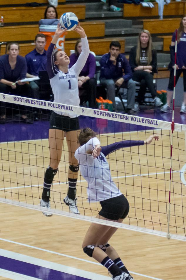 Taylor Tashima sets the ball for a spike. The true freshman setter has excelled in her first year, starting 22 games for the Wildcats.