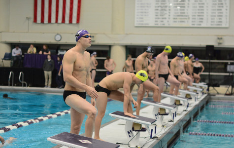 Men's Swimming: Wildcats still confident after hard loss to No. 19 Hawkeyes