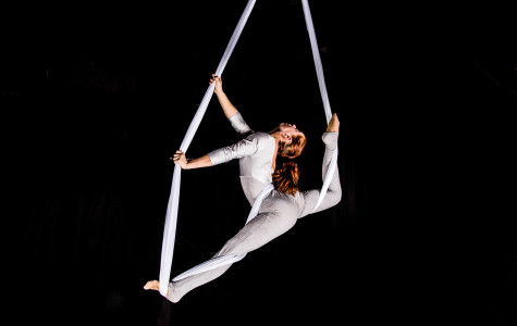 """The Actors Gymnasium's new show, """"Circuscope,"""" opens Saturday. The production is an acrobatic twist on microscopic life."""