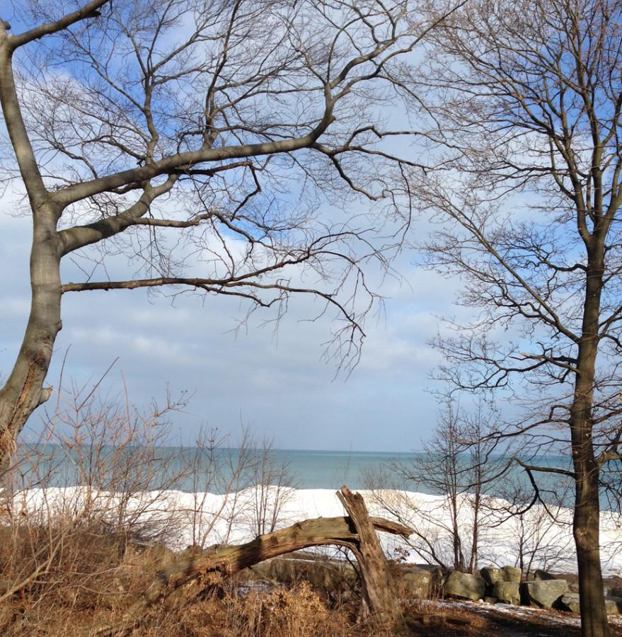 """Artist Joyce Elias posted this photo on Feb. 3 describing the weather's color as """"pale green gray."""""""