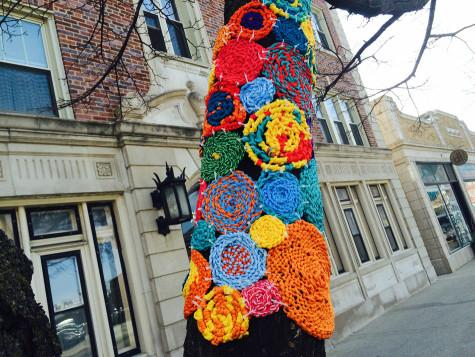 Community Yarn Art Project to color downtown Evanston