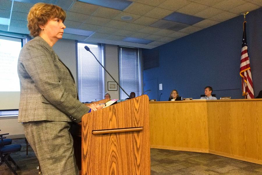 Karen Danczak Lyons, director at Evanston Public Library, presents a plan for the library's 2016 budget before aldermen at a special City Council meeting Saturday morning. The proposed tax levy increases library funding by about 4 percent.