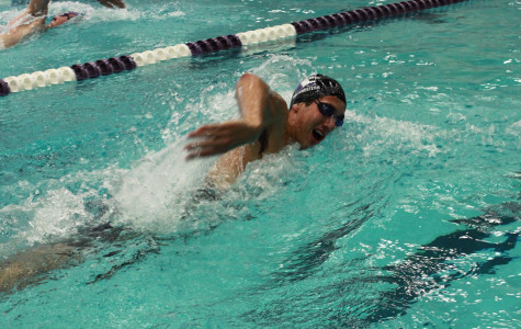 Swimming: Cats bring back alumni for exhibition