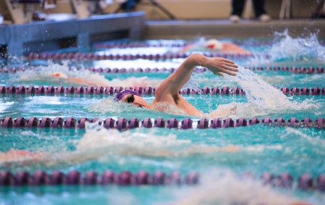 Men's Swimming: Cats expect to achieve top times at annual TYR invitational