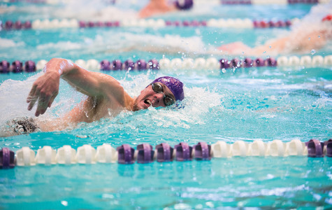 Men's Swimming: Wildcats find silver linings in loss to Badgers