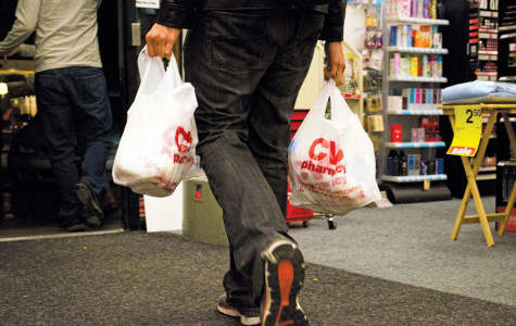 City's plastic bag ban off to smooth start