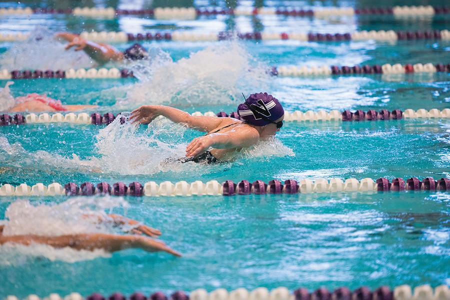 Ellen Stello races past her competition. The junior swimmer and the rest of the Wildcats handled nearly every opponent that came their way over Winter Break.