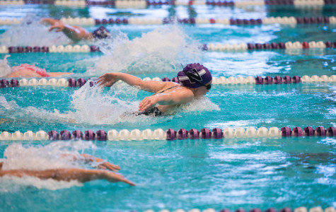 Women's Swimming: Wildcats head to Notre Dame following big win