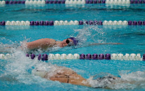 Women's Swimming: Northwestern prepares for tough competition at Big Ten Championships