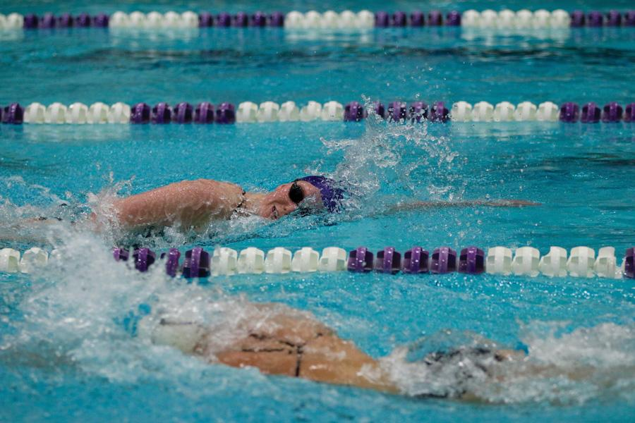 Ellen Anderson participates in the freestyle. The senior holds the Wildcats' top time in the 500-yard freestyle this season.
