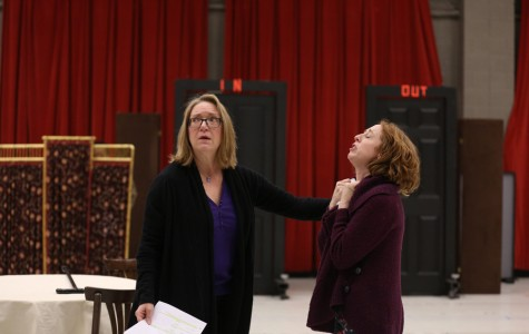 Tony Award nominee, Northwestern alumna performs in Chicago production of 'The Matchmaker'