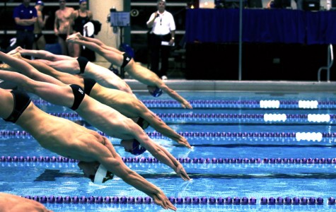 Men's Swimming: Northwestern swims to best finish in six years at Big Tens