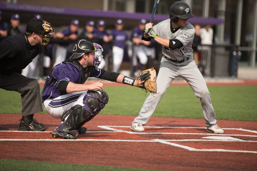 Jack+Claeys+frames+a+pitch.+The+sophomore+hit+2+RBIs+in+the+Wildcats%E2%80%99+12-10+win+over+Chicago+State+on+Tuesday.
