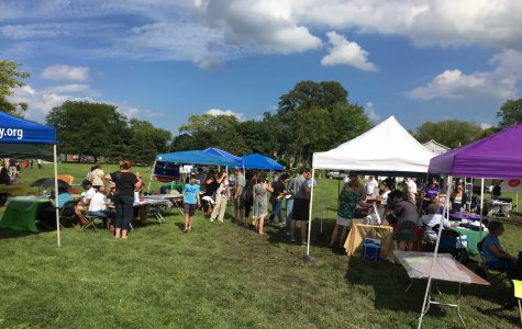 Fifth Ward Festival helps bring community together to combat gun violence at Twiggs Park