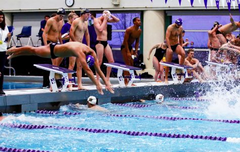 Men's Swimming: Experienced Wildcats looking to build upon last season's success