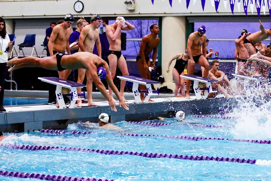 A Wildcat swimmer dives into the pool during a relay. With a more seasoned squad and the return of U.S. Olympian Jordan Wilimovsky, Northwestern is looking to improve on last season's eighth-place finish in the Big Ten Championships.