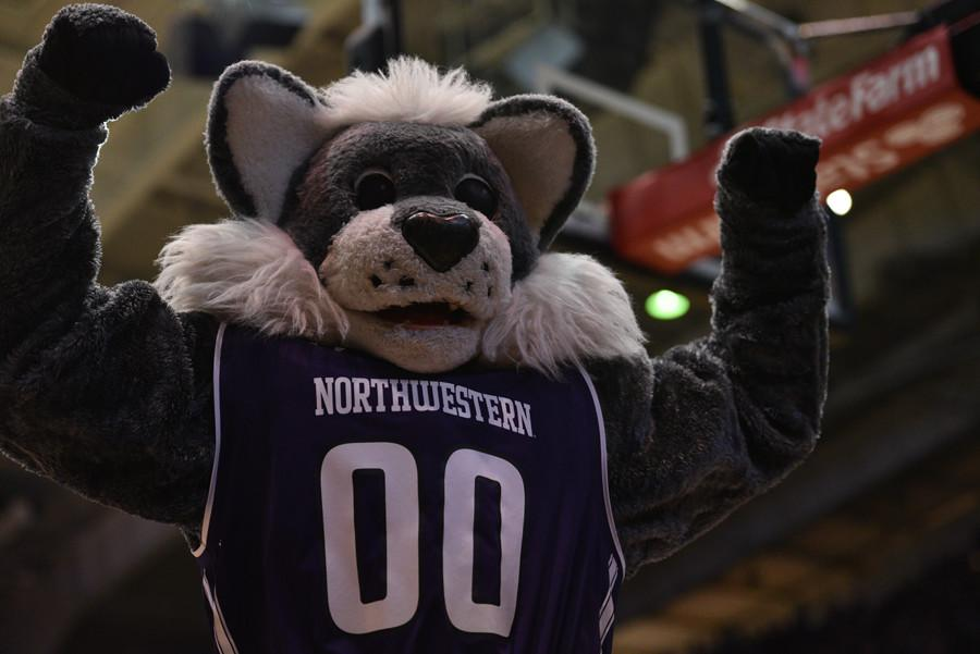Willie celebrates. Northwestern earned its first-ever bid to the NCAA Tournament on Sunday.