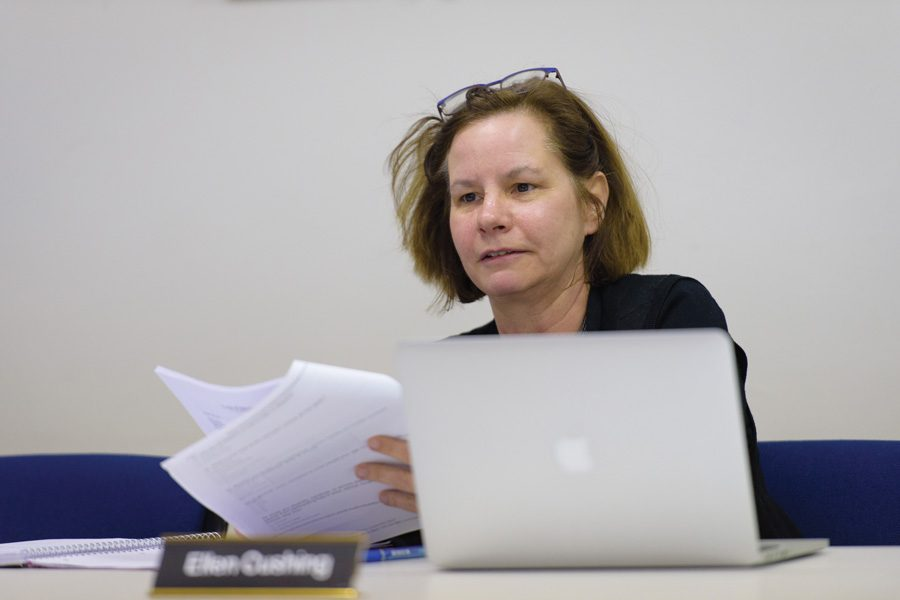Ellen Cushing, chair of the Housing, Homelessness and Human Relations Commission, speaks at a Thursday meeting. The commission voted to renew a grant to a landlord-tenant mediation group.