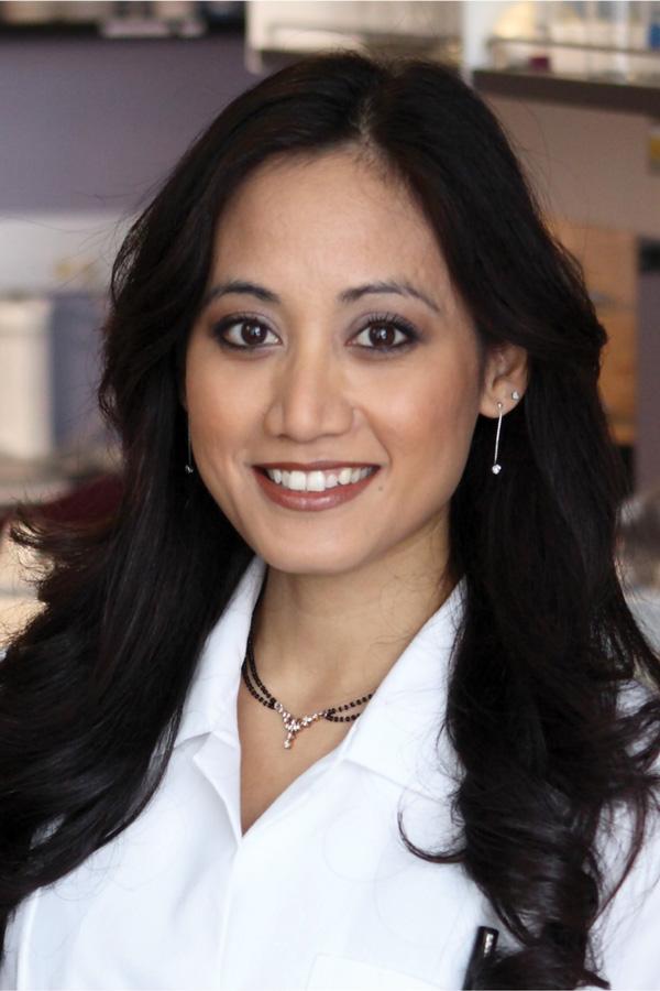 McCormick Prof. Ramille Shah.