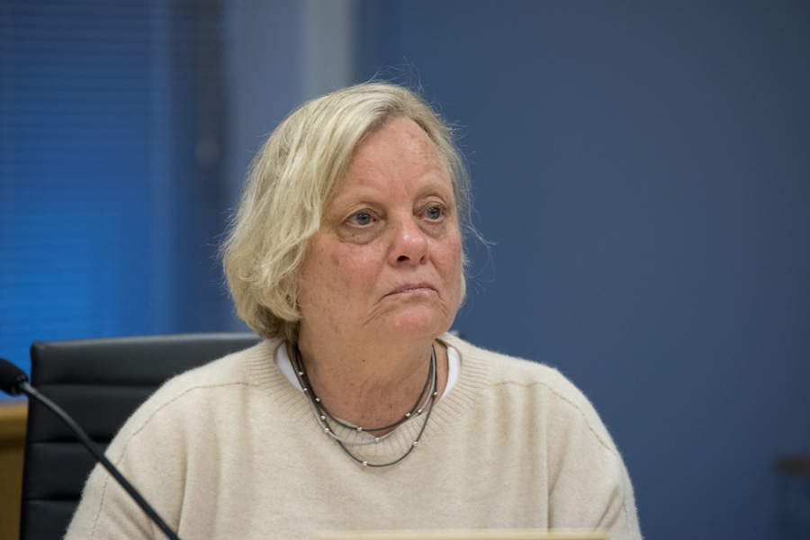 Ald. Judy Fiske (1st) speaks at a city meeting on Monday. Fiske said she supported the creation of a citizen oversight group to build trust for Evanston police.