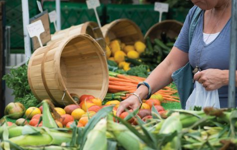 Market season brings new resources, out-of-town vendors to Evanston