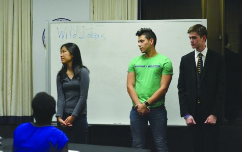 ASG Senate elects 1 senator to Wild Ideas committee