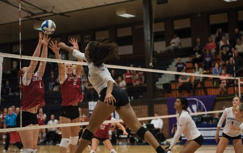 Volleyball: No Abbott, no problem for Northwestern against Rutgers
