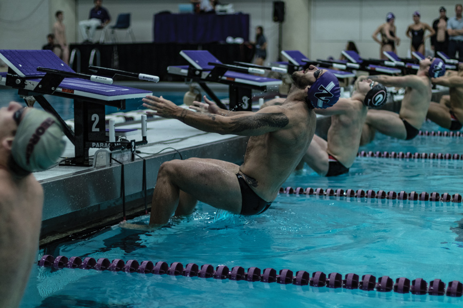 Nick Petersen dives off the block. The senior and the Wildcats fell to Wisconsin on Saturday.