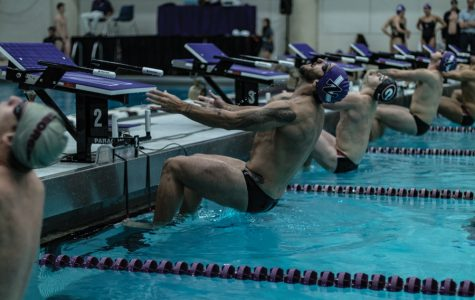 Men's Swimming: Northwestern outlasts Michigan State, wins TYR Invitational