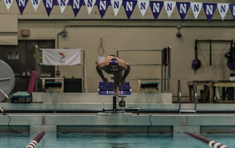 Men's Swimming: Northwestern wins one, drops two at weekend SIU Invite