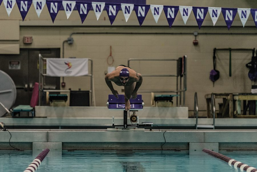 Nick Petersen dives into the pool. The senior and the Wildcats went 1-2 over the weekend.
