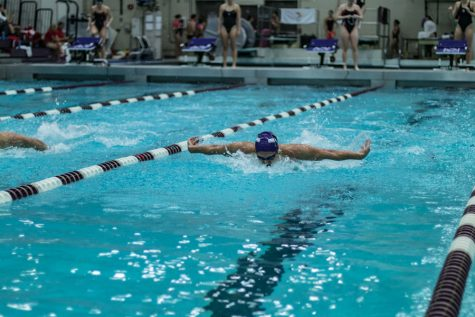 Men's Swimming: Northwestern suits up for TYR Invitational