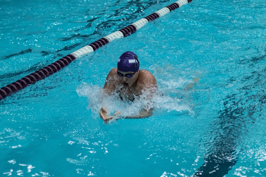Sophie Angus swims. The freshman and the Wildcats won the TYR Invitational over the weekend.